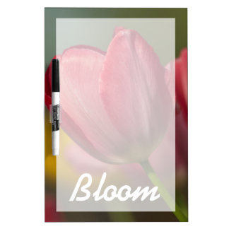 Close-up of red and yellow tulips in garden dry erase board