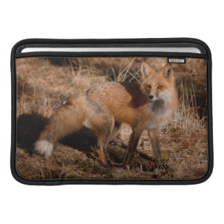 Close-up of red fox sleeve for MacBook air