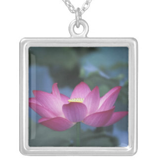 Close-up of red lotus flower and green leaves, square pendant necklace