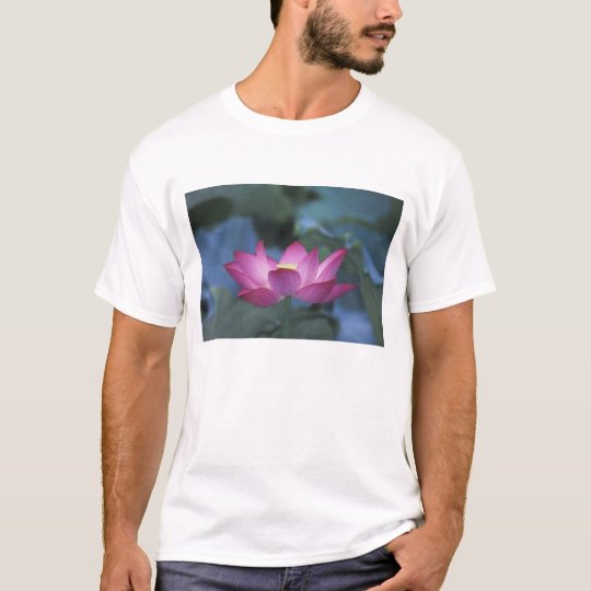 Close-up of red lotus flower and green leaves, T-Shirt