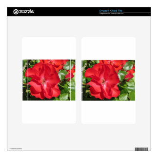 Close-up of red rose kindle fire skins