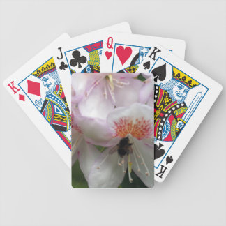 Close up of Rhododendron with Bee Card Deck