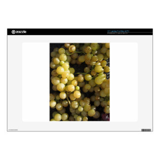 Close-up of ripe grapes in box decal for laptop