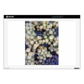 Close-up of ripe grapes in box laptop skin