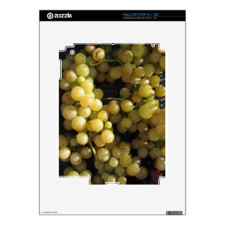Close-up of ripe grapes in box skins for the iPad 2