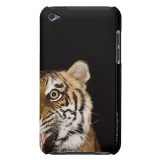 Close up of roaring tiger's face barely there iPod cover