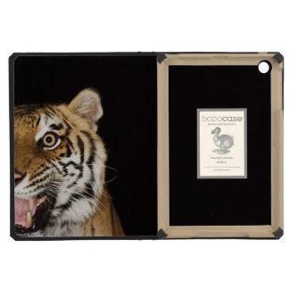 Close up of roaring tiger's face iPad mini retina cover