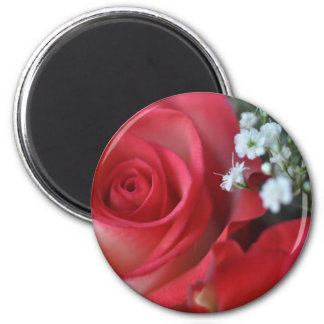 Close up of rose and baby's breath fridge magnets
