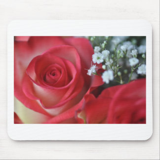 Close up of rose and baby's breath mouse pad