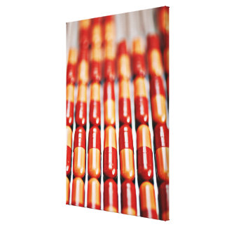 Close up of rows of pill capsules canvas print