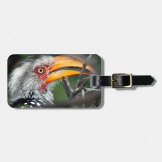 Close-Up Of Southern Yellow-Billed Hornbill Bag Tag