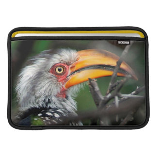 Close-Up Of Southern Yellow-Billed Hornbill MacBook Sleeves