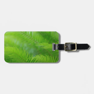 Close-up of sword fern luggage tag