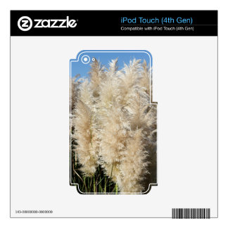 Close-Up of Tall Pampas Grass Plumes iPod Touch 4G Decal