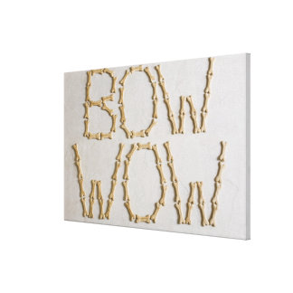 Close-up of texts BOW WOW made with dog biscuits Canvas Print