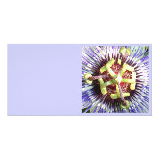 Close Up of The Centre Of a Passiflora Flower Card