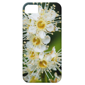 Close-up of tiny flowers iPhone SE/5/5s case