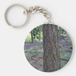 Close up of Tree Trunk in forest Keychains