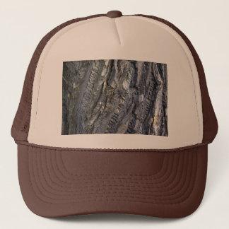 Close-up of tree trunk's grey bark trucker hat