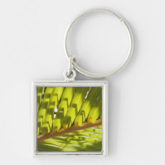 Close up of tropical palm frond keychain
