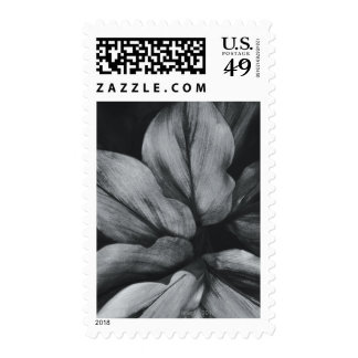 Close-up of tropical plant stamps