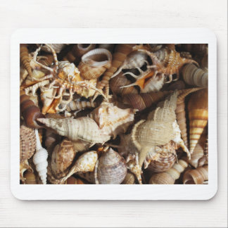 Close-up of Tropical Seashells Mouse Pad