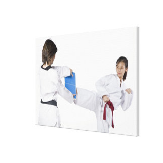 Close-up of two young women practicing 2 canvas print