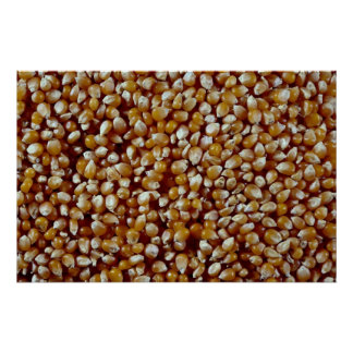 Close-up of unpopped popcorn kernels texture posters