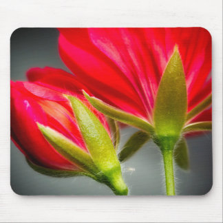 Close-up of vining geranium from back of flower mouse pad