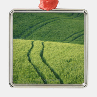 Close up of Wheat Field with Tire Tracks, Metal Ornament