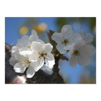 """Close Up Of White Cherry Blossom Flowers 5.5"""" X 7.5"""" Invitation Card"""
