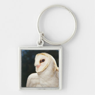 Close-up of wild owl Silver-Colored square keychain