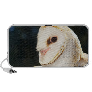 Close-up of wild owl travel speaker
