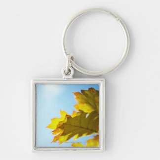 Close Up of Yellow Fall Leaves Keychain