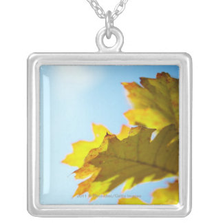 Close Up of Yellow Fall Leaves Silver Plated Necklace