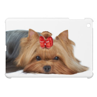 Close-up of Yorkshire terrier's muzzle Cover For The iPad Mini