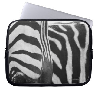 Close-up of zebra face and shoulder laptop computer sleeves