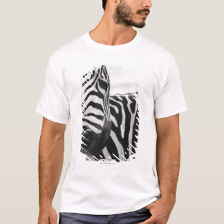 Close-up of zebra face and shoulder T-Shirt
