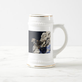 Close-up on a little sparrow on a rock beer stein