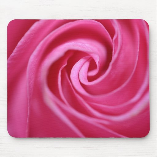 Close up on a pink rose mouse pads
