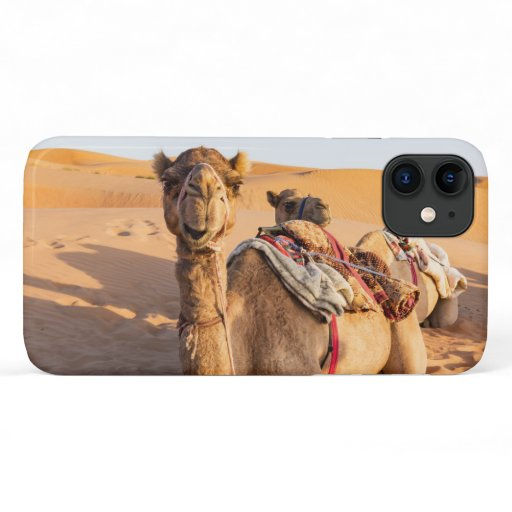 Close-up on Camel in Oman desert iPhone 11 Case