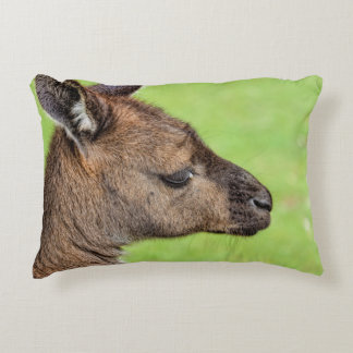 Close-up or portrait of wallaby decorative pillow