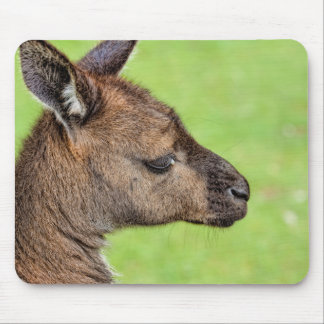 Close-up or portrait of wallaby mouse pad