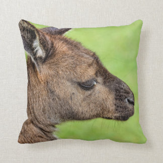 Close-up or portrait of wallaby throw pillow