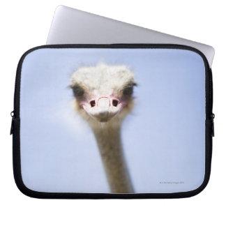 Close up Ostrich head Laptop Sleeve