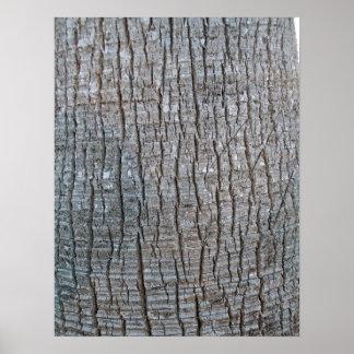 Close up Palm Tree Trunk Print