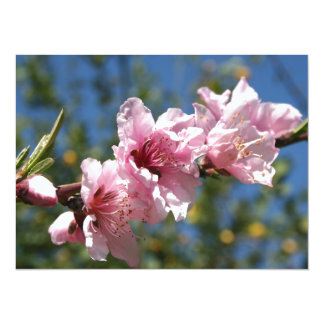 Close Up Peach Tree Blossom Against Blue Sky Personalized Invites