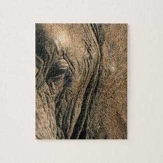 Close-up photo of African elephant eye Jigsaw Puzzles