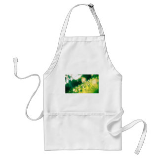 Close Up Photo of Dandelion Adult Apron