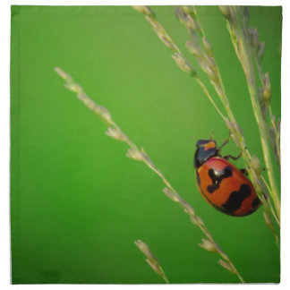 close up photo of ladybird with natural green back cloth napkins